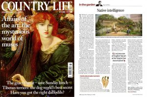 scan of country life february 2019 - native intelligence