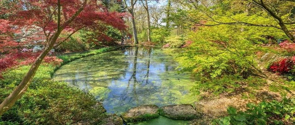 Gardens Illustrated's Virtual Garden Tour series April 2020